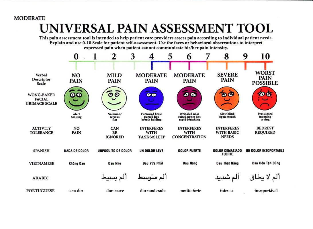 pain assessment management and evaluation Assessment and management of pain in the elderly  12 principles for pain assessment and management 12 screening for pain 13 assessment tools 15 case study - quiz 17  knowledge evaluation b) continue to refer the learning package to reinforce the knowledge that you have gained.
